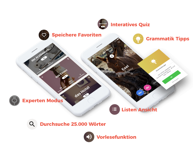 derdiedas-app-features-de